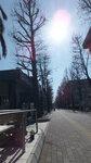 2012年1月 冬空(えみかショップ前)
