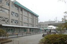 2012年2月8日 雪