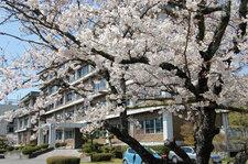 2012年4月4日 職員会館から本部棟を臨む