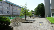 校友会館の前が工事中。大きな穴が。 さてどう変わるのでしょうか。